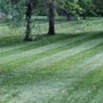 lawn mower blades marion iowa