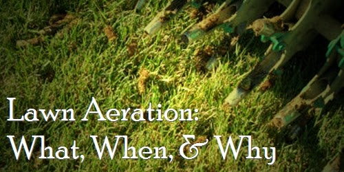 Lawn Aeration Why You Should Aerate Your Lawn