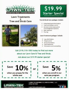 tree and shrub care flyer