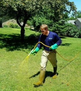 lawn fertilization cedar rapids ia