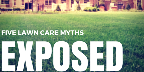 5 Common Lawn Care Myths Exposed Lawn Tek Lawn Care
