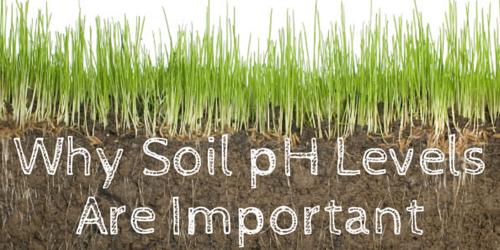cedar rapids ph soil testing