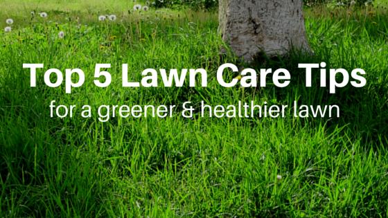 lawn care des moines