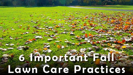 fall iowa city lawn care