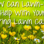 How Can Lawn-Tek Help With Your Spring Lawn Care?