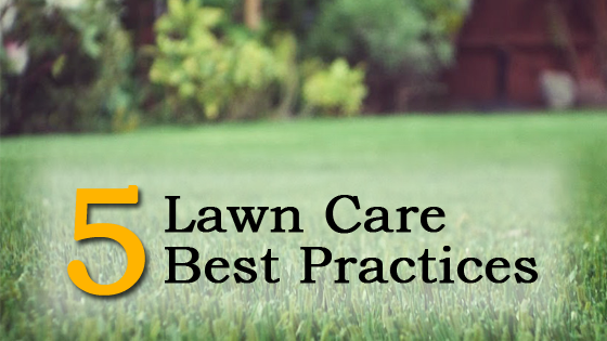 des moines lawn care best practices