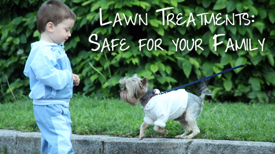 safe lawn treatments