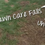 3 DIY Cedar Rapids, IA Lawn Care Mistakes and How to Avoid Them
