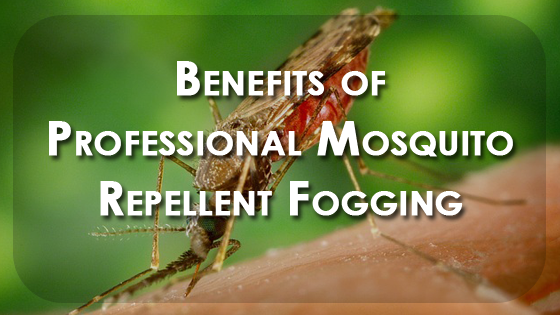 mosquito repellent yard treatment fogging cedar rapids iowa city ia