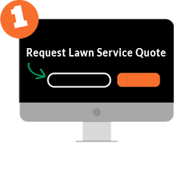 Step 1: Choose lawn services