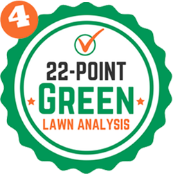 Step 4: 22 Point Green Lawn Analysis